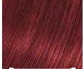 Indus Valley Botanical Hair Color- Mahogany Kit