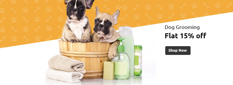 Dog Training & Grooming