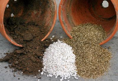 Organic potting mix medium coco peat perlite compost for Organic compost soil