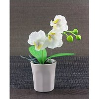 Artifical Nice White Flower With Ceramic Pot