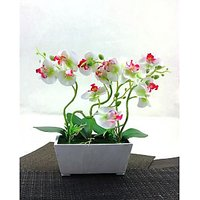Artifical White & Pink Flower With Ceramic Pot