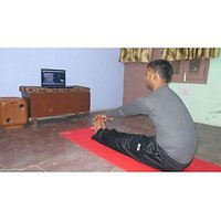 Yoga Training Online Group Classes For 2 Students- 12 Skype Yoga Lessons Program