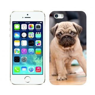 Trilmil Premium Design Back Cover Case for Apple Iphone 5 PRTi5A01330