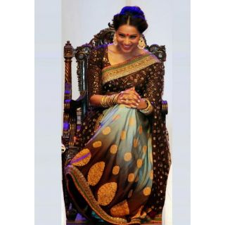 Bollywood Bipasha Basu Bridal Queens  Saree