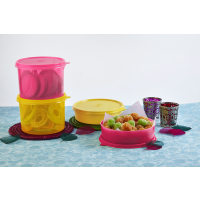 Tupperware Store All Canister Medium 1.3 Ltr (Set Of 2) + Large Handy Bowls (Set Of 2)