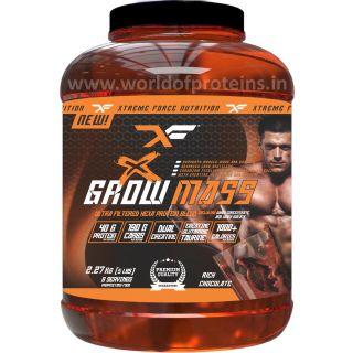 XF Grow Mass 5Lbs Chocolate