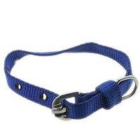 F Dog Belt