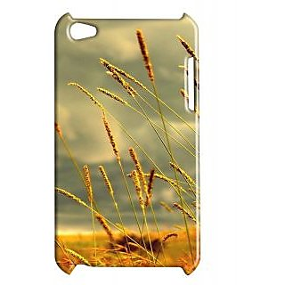 Pickpattern Back Cover For Apple Ipod Touch 4 CORNSIT4-4856