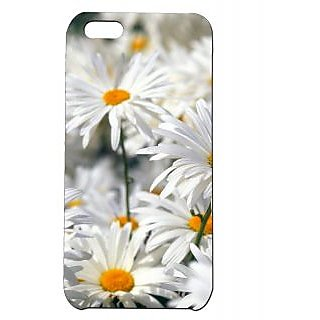 Pickpattern Back Cover For Apple Iphone 5C WHITESUNFLOWERI5C-2376
