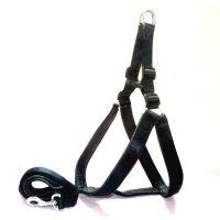 Petshop7 Stylish Dog Harness And Leash Set Black 1.25 Inch - Large