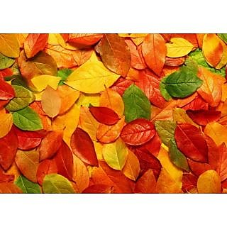 Mesleep Autumn Leaves Wall Poster