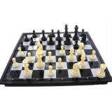 Chess Board Games Toys Gift With Chess Coin