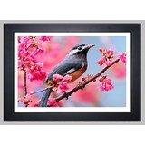 Beautiful Birds Printed Wall Art Paintings