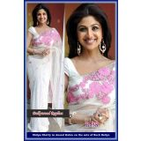 Bollywood Designer Saree White (Design 11)