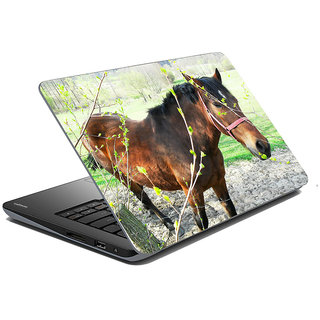 meSleep Wild Life Laptop Skin LS-48-163