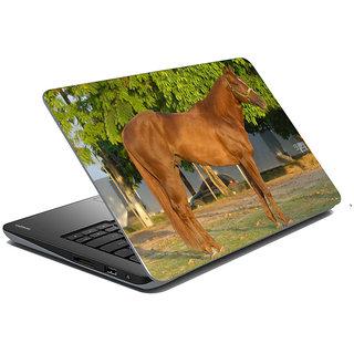 meSleep Wild Life Laptop Skin LS-49-004