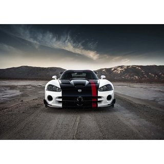 Mesleep Race Car Canvas