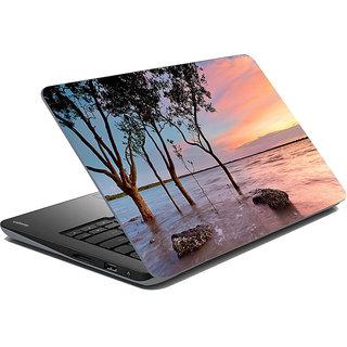 Mesleep Nature Laptop Skin LS-30-001