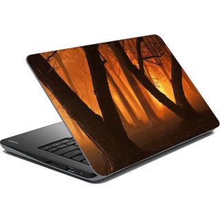 Mesleep Nature Laptop Skin LS-30-291