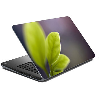 Mesleep Nature Laptop Skin LS-31-013