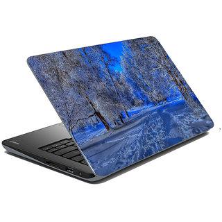 Mesleep Nature Laptop Skin LS-31-069