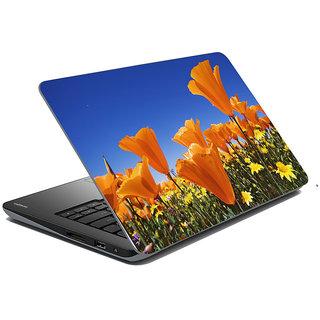 Mesleep Nature Laptop Skin LS-35-043