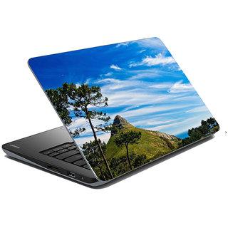 Mesleep Nature Laptop Skin LS-35-338