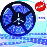 Blue Led Strip Light 5 Meter On Lowest Price On Ebay.