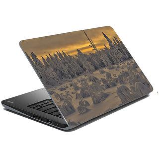 Mesleep Nature Laptop Skin LS-37-287