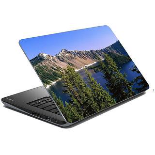 Mesleep Nature Laptop Skin LS-39-324