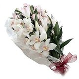 Special Bunch Of 12 Cute White Orchids Flower Dl3flw222