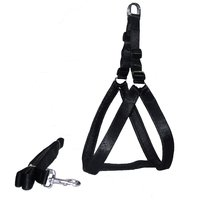 Petshop7 dog harness and leash set Black .75 inch