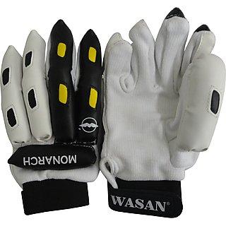 Wasan Cricket Batting Gloves