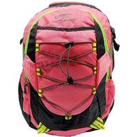 Donex Pink & Grey Color Stylish Light Weight 28 Litre Laptop Backpack RSC00669