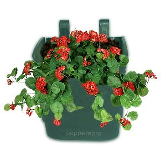 Minerva Naturals Vertical Garden Wall Hanging Pot (Green-10 Qty)