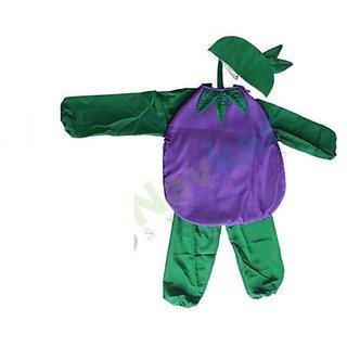 Brinjal Vegetable unisex costume for fancy dress competition