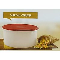 Tupperware Carry All Canister - DRY STORAGE