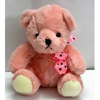 Imported Exclusive / Valentine Special Gift Soft Teddy Bear 6 Color # 4737