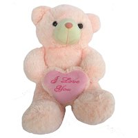 Imported Exclusive Festival Soft Teddy Bears Valentine Special Gift #3273
