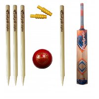 Prokyde Kashmir Willow Cricket Kit