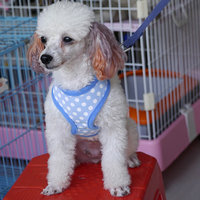 Pet Dog Soft Mesh Harness Clothes Xs - Blue With White Dots