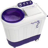 Whirlpool Ace 7.2 Stainfree 7.2 kg Semi Automatic Washing Machine (Flora Purple)
