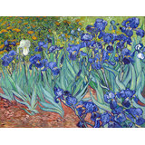 Vincent Van Gogh, Irises, Giclee Print On Archival Paper
