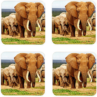 Instyler Digital Printed Tea Coasters (TCRDS-10294)