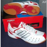Pro Ase Badminton Shoes Bg 002 100 Soft And Durable