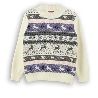 Crew Neck Sweater (8907264021821)