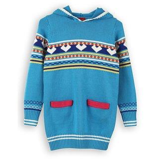 Hooded Full Sleeve Sweater (8907264015530)