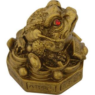 Feng Shui King Money Frog
