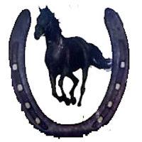 Black Horse Shoe Kale Ghode Ki Naal-set Of Two