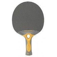 Todayin Table Tennis Bat